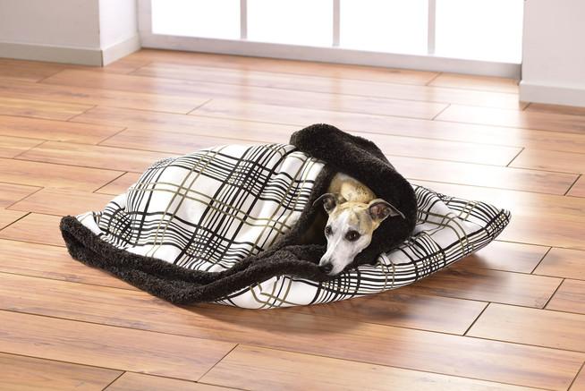 Darauf sollte man bei der Einrichtung eines Hundeschlafplatzes achten