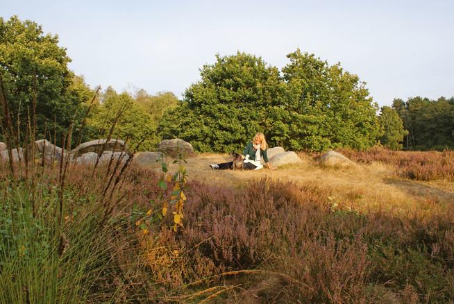 Den größten Naturpark Niedersachsens kann man am besten individuell en