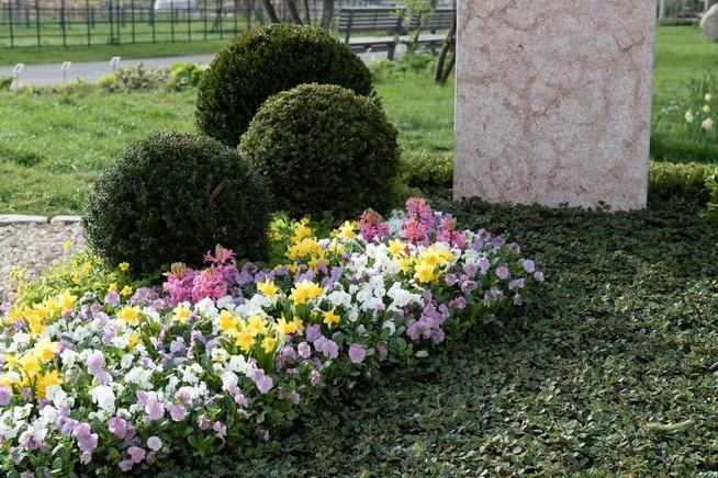 Friedhofsgärtner setzen Trends bei der Frühjahrsbepflanzung